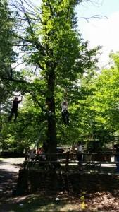 (02/06/14) Fiestas de Mayo: escalada, tirolina, puente mono