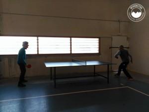 actividades-rocodromo-pabellon-aldeire-2