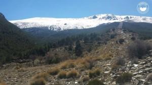 montanismo-excursion-puerto-de-la-ragua13